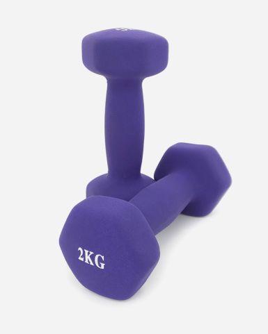 啞鈴 2公斤